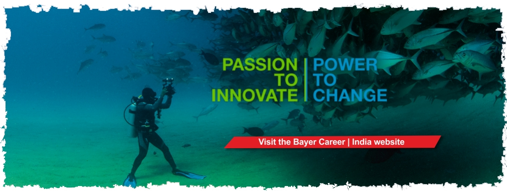 Bayer Careers