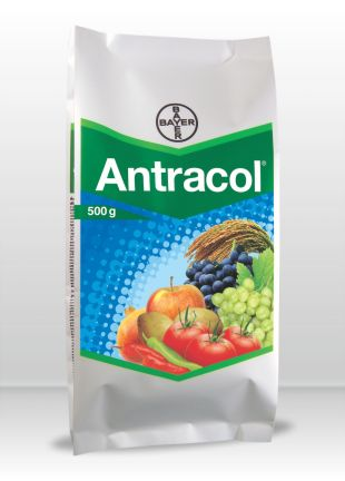 Antracol